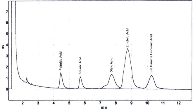 γ-Linolenic acid CAS 506-26-3 GC